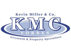 Kevin Miller & Co